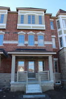 new big townhouse for rent in Brampton (Heart Lake/ Bovaird Dr)