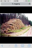 Logging job