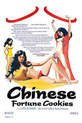 1980 CHINESE FORTUNE COOKIES VINTAGE ADULT MOVIE POSTER PRINT 54x36 9 MIL - Paper Fortune Cookies