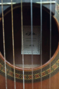 Classical Guitar and case