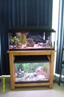 AQUARIUMS - 2 -20 GALLON PACKAGE WITH SOLID WOOD STAND