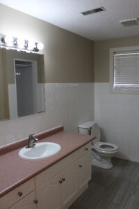 1 Bedroom Apartment. Available January 1st Cambridge Kitchener Area image 4