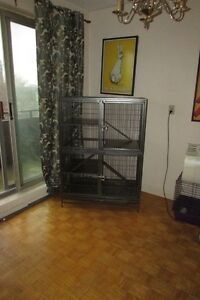 Ferret Cage, Living World