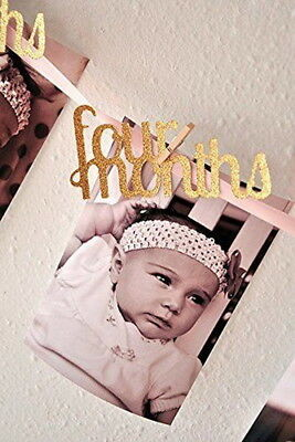 Girl Decorations Monthly Photo Banner 1-12 Month Photo Banner 1st Birthday