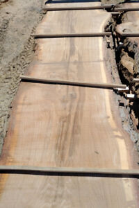 White Oak Planks