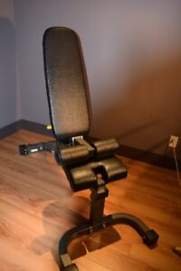 Weight Lifting Bench by Progression Fitness