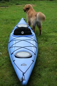 Perception - 15 ft Expression Kayak for Sale