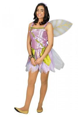 Feen Fee Elfe Tinkerbell Kostüm Kleid Elfen Damen Waldfee Feenkostüm (Lila Tinkerbell Kostüm)