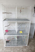 used breeding cage for very cheap price
