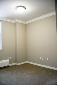 Bach on Margaret Ave - Lots of Amenities! Kitchener / Waterloo Kitchener Area image 3
