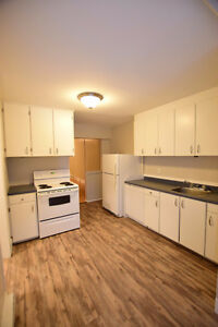 Newly Renovated Large 1 Bedroom with alot of storage