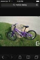 Norco Daisy bike 20 inch tires