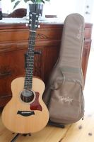 Taylor Mini GS with pick-up