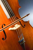 Violin, Viola, Cello, Double Bass, Guitar group lessons