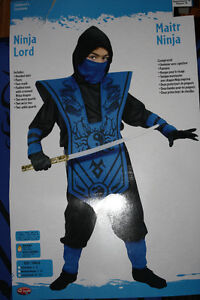 Ninja Lord Costume - size large (10-12) Kitchener / Waterloo Kitchener Area image 2