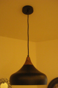 Pendant Light / Lampe suspendue