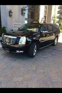 2013 Cadillac Escalade Luxury SUV, Crossover