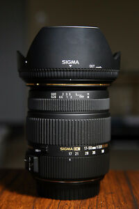 Sigma 17-50mm f/2.8 & Canon 55-250mm f/4-5.6 IS STM Lens