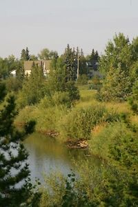 Lakeside Chateau- 1 & 2 Bedroom Suites Available Now !