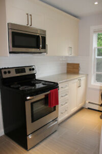 Large South End Bdrm Ste in Shared Flat Available!