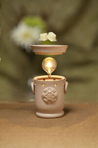 Scentsy Independent Star Director