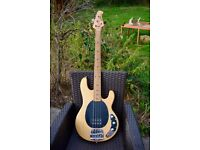 Music man bass guitar