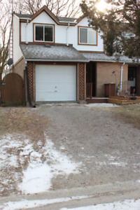 Freshly renovated 4 bedroom end unit Town home  Available March
