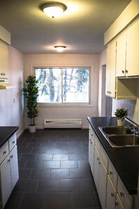 LARGE FULLY RENOVATED 3 closed bed room- Lachine great location