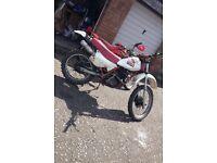 Honda xlr 125 (not pit bike or xr crf )
