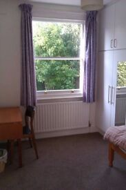 Short term- Queens Park Large Single Room