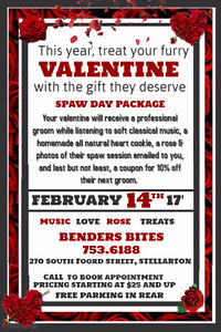 Spaw Day - Valentine's Pet Grooming Package
