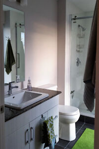 Now Available - furnished 2 bdrm with den - corner unit Kitchener / Waterloo Kitchener Area image 8