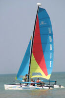 want to buy a used Hobie mast