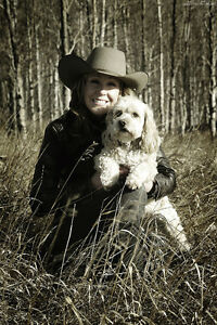 Photoshoots | Ideal for Equestrians, Musicians, Pet Owners