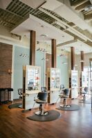 Licensed Stylist Wanted FT or PT
