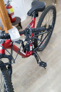 Schwinn Telsa mountain bike