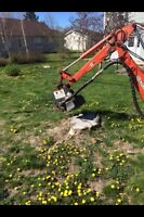 Tree & limb removal, stump grinding, chipping insured