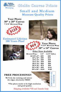 Canvas Prints in Winnipeg - Your Photo on Canvas