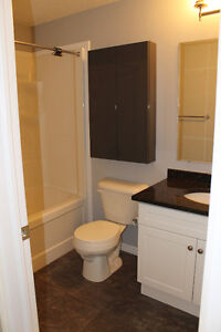 ATTENTION INVESTORS - IMPECCABLE 1 BEDROOM IN UNIVERSITY VILLAGE Kitchener / Waterloo Kitchener Area image 6