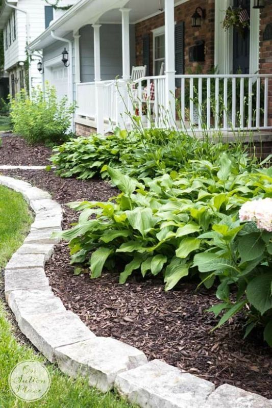 Up Your Curb Appeal: 5 No Fail Tips | Budget friendly ideas that anyone can do!