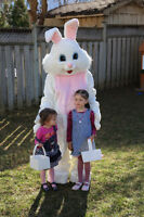 Bunny visit for your Birthday party or a Baby Shower