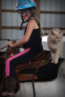 HORSE CAMPS  - SILVER RIVER EQUESTRIAN CENTER... LEARN TO RIDE