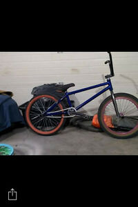 Fit bike and we the people addict