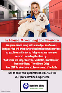 In Home Pet Grooming for Seniors
