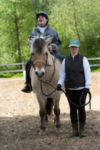 Volunteers Wanted - Therapeutic Horseback Riding Program