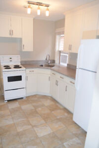Cathedral Two Bedroom, Deck, new kitchen, parking, great locat