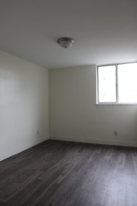 Three Junior 1 Bedroom apartments available October or November