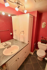 2bd 2bath 998sqft renovated with South Downtown View North Shore Greater Vancouver Area image 8