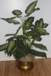 Artificial Plant in Brass Pot