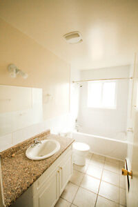 Jan 1st - Renovated Large One Bedroom Apartment London Ontario image 1